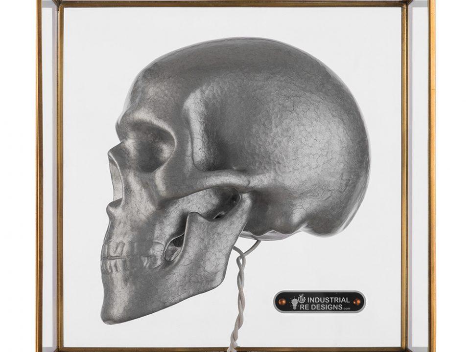 Boxed Skull